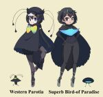 2girls ballet_slippers bangs bird black_cape black_eyes black_gloves black_hair black_headwear black_legwear black_shorts black_sweater blue_eyes bow cabbie_hat cape character_name closed_mouth commentary_request elbow_gloves english_text frilled_shorts frills gloves greater_lophorina_(kemono_friends) grey_footwear hands_on_hips hat highres kemono_friends legwear_under_shorts long_sleeves looking_at_viewer multicolored_neckwear multiple_girls namesake pantyhose ribbed_sweater short_hair shorts smile standing standing_on_one_leg sweater turtleneck western_parotia_(kemono_friends) yamaguchi_yoshimi