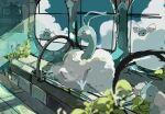 ._. absurdres altaria animal_focus backlighting black_eyes blue_sky blurry_foreground blush_stickers closed_eyes clouds commentary day full_body gen_3_pokemon highres indoors kamonabe_(kamonabeekon) no_humans plant pokemon pokemon_(creature) sitting sketch sky sunlight swablu window