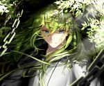 1boy androgynous bangs blue_eyes chain commentary_request cracked_skin dappled_sunlight enkidu_(fate) expressionless fate/grand_order fate/strange_fake fate_(series) floating_hair green_eyes green_hair hair_between_eyes half-closed_eyes highres leaf lens_flare long_hair looking_away looking_down nature plant robe shadow shiranui_(nisioisin_sinob) sidelocks slit_pupils solo sunlight upper_body white_robe