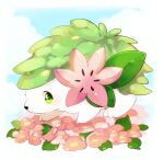 absurdres animal_focus banchiku blue_sky blush border clouds commentary_request day flower from_side full_body gen_4_pokemon green_eyes highres legendary_pokemon light_blush looking_at_viewer mythical_pokemon no_humans outdoors pink_flower pokemon pokemon_(creature) shaymin shaymin_(land) sky solo white_border