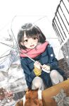 1girl :d bangs black_hair black_skirt blue_coat blush box brown_eyes cardigan cat coat commentary_request duffel_coat eyebrows_visible_through_hair highres holding holding_umbrella open_mouth original pantyhose pink_scarf pleated_skirt railing scarf school_uniform signature skirt smile snow snowing solo soragane_(banisinngurei) squatting transparent transparent_umbrella umbrella uniform upper_teeth white_sky winter winter_clothes yellow_cardigan