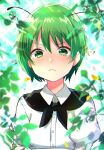 1girl antennae bangs black_cape blurry blurry_foreground blush cape closed_mouth collared_shirt commentary crossed_arms dew_drop eyebrows_visible_through_hair frown green_eyes green_hair highres katsuobushi_(eba_games) long_sleeves looking_at_viewer plant pout shirt short_hair solo sparkle tearing_up touhou upper_body v-shaped_eyebrows water_drop white_shirt wriggle_nightbug