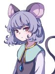 1girl absurdres animal_ears bangs blue_capelet capelet closed_mouth eyebrows_behind_hair grey_hair highres jewelry kame_(kamepan44231) long_sleeves looking_at_viewer mouse_ears mouse_tail nazrin pendant red_eyes short_hair simple_background solo tail touhou upper_body white_background white_sleeves