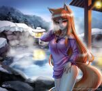 1girl animal_ears bangs blunt_bangs blush breasts brown_hair closed_mouth collarbone come_hither eyebrows_visible_through_hair fox_ears fox_girl fox_tail holo jewelry large_breasts long_hair long_sleeves looking_at_viewer naughty_face necklace night onsen outdoors racoon-kun red_eyes seductive_smile smile solo spice_and_wolf tail wet