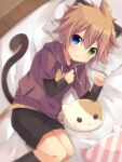 1boy animal_ears cat_boy cat_ears cat_pillow cat_tail eyebrows_visible_through_hair hair_between_eyes highres hood hoodie male_focus on_bed shorts solo tail