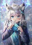 1girl absurdres ahoge animal_ear_fluff animal_ears bangs blue_archive blue_eyes blue_scarf blurry blush bokeh breasts bright_pupils chromatic_aberration commentary_request depth_of_field eyebrows_visible_through_hair grey_background halo highres jacket looking_at_viewer medium_breasts medium_hair mirage_(rairudiseu) mismatched_pupils open_clothes open_jacket parted_lips purple_jacket scarf shiroko_(blue_archive) shirt silver_hair simple_background snowing solo upper_body white_pupils white_shirt winter wolf_ears