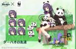 animal azur_lane bamboo black_footwear bow bowtie commentary_request eastern_radiance_(emblem) expressions feeding hair_ornament hairband hat highres holding holding_animal kinjo_kuromomo low_twintails ning_hai_(azur_lane) official_alternate_costume official_art panda promotional_art purple_hair sitting twintails violet_eyes white_headwear white_legwear