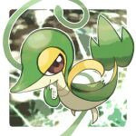 border brown_eyes closed_mouth commentary_request gen_5_pokemon looking_at_viewer no_humans outline outside_border plant pokemon pokemon_(creature) rakugakutari smile snivy solo vines white_border