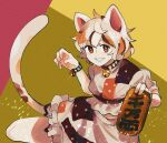 1girl animal_ears bell brown_eyes cat_ears cat_tail frilled_skirt frills gold highres koban_(gold) maneki-neko midriff multicolored_shirt neck_bell patches shiny short_hair short_sleeves skirt smile sparkle tail touhou unconnected_marketeers unnamed_cat_girl_(touhou) wavy_hair