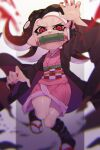 1girl absurdres action asa_no_ha_(pattern) bamboo bit_gag black_hair black_haori checkered_obi fingernails fusion gag glaring gradient_hair hair_ribbon haori highres japanese_clothes kamado_nezuko kimetsu_no_yaiba kimono leg_wrap long_hair long_sleeves looking_at_viewer makeup mascara motion_blur multicolored_hair obi octoling pink_kimono pink_ribbon pointy_ears prat_rat red_eyes red_nails redhead ribbon sandals sash sharp_fingernails short_kimono slit_pupils solo splatoon_(series) standing standing_on_one_leg suction_cups tabi tentacle_hair v-shaped_eyes white_legwear