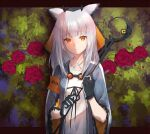 1girl arknights armband bangs blunt_bangs bush closed_mouth criss-cross_halter dress expressionless eyebrows_visible_through_hair flower grey_jacket halter_dress halterneck holding holding_staff ichita_(yixisama-shihaohaizhi) jacket long_hair long_sleeves looking_at_viewer open_clothes open_jacket orange_eyes owl_ears ptilopsis_(arknights) red_flower red_rose rhine_lab_logo rose silver_hair solo staff two-tone_gloves upper_body white_dress wide_sleeves