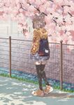 1girl animal_ears backpack bag bangs black_legwear blue_bag blunt_bangs cat_ears cherry_blossoms contemporary dappled_sunlight day from_behind full_body hands_in_pockets highres hood hoodie kageyasu nia_(xenoblade) outdoors shoes short_hair shorts silver_hair sneakers solo sunlight thigh-highs walking white_shorts xenoblade_chronicles_(series) xenoblade_chronicles_2 yellow_eyes yellow_footwear yellow_hoodie