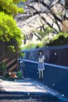 1girl bangs bicycle bicycle_basket black_hair blue_skirt blurry blurry_background blurry_foreground blush chain-link_fence cirnq depth_of_field falling_petals fence flower green_neckwear ground_vehicle highres loafers looking_at_viewer medium_hair neckerchief original outdoors petals plant pleated_skirt potted_plant retaining_wall road scenery school_uniform serafuku shoes skirt solo standing street traffic_cone tree