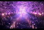 absurdres cherry_blossoms commentary_request highres lantern letterboxed nature night no_humans original outdoors petals purple_theme railing reflection scenery skyrick9413 tree