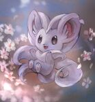 :3 animal_focus artist_name black_eyes blank_eyes blurry blurry_foreground cinccino commentary_request day_walker1117 english_text flower fluffy full_body gen_5_pokemon happy highres looking_at_viewer no_humans open_mouth pawpads petals pokemon pokemon_(creature) signature smile solo white_flower
