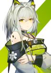 1girl absurdres animal_ear_fluff animal_ears arknights ayu_(ayuyu0924) bangs bare_shoulders commentary_request dress eyebrows_visible_through_hair green_dress green_eyes hair_between_eyes hair_intakes highres kal'tsit_(arknights) long_hair long_sleeves looking_at_viewer lynx_ears off-shoulder_dress off_shoulder oripathy_lesion_(arknights) silver_hair solo stethoscope upper_body white_background
