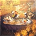 amura-of-jupiter autumn bird bird_bath blurry border bright_pupils closed_eyes commentary english_commentary fletchinder fletchling gen_4_pokemon gen_5_pokemon gen_6_pokemon gen_7_pokemon happy pidove pikipek pokemon reflection splashing starly transparent_border water white_pupils