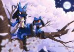 artist_name closed_mouth commentary_request enishi_(menkura-rin10) gen_4_pokemon highres lucario moon night open_mouth outdoors petals pokemon pokemon_(creature) red_eyes riolu sitting sky smile spikes toes tongue tree yellow_fur
