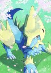 blue_fur brown_eyes claws closed_mouth commentary_request day gen_3_pokemon grass highres legs_apart manectric outdoors petals pokemon signature smile standing tanpakuroom