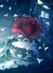 1girl bird blue_dress car cat crack dress flower ground_vehicle highres hipy_(image_oubliees) leaf motor_vehicle original oversized_flowers plant red_flower red_rose rose ruins shadow signature sitting solo white_bird white_cat wide_shot