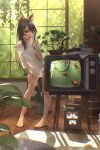 1girl absurdres animal_ears bangs bare_legs barefoot black_hair blue_eyes blush bonsai book breasts cat_ears cat_girl cat_tail commentary_request day electric_fan eyebrows_visible_through_hair fangs feet fish fish_tank full_body hand_on_own_cheek hand_on_own_face hand_on_own_thigh highres indoors joeychen leaning_forward long_hair looking_at_animal mouth_drool off_shoulder original plant potted_plant shirt single_bare_shoulder skin_fangs solo standing tail tail_raised television tree very_long_hair white_shirt window wooden_floor