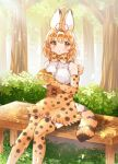1girl animal_ears bare_shoulders blonde_hair blush bow bowtie burger commentary_request eating elbow_gloves eyebrows_visible_through_hair food gloves high-waist_skirt highres kemono_friends looking_at_viewer multicolored_hair print_gloves print_legwear print_neckwear print_skirt serval_(kemono_friends) serval_ears serval_girl serval_print serval_tail shirt short_hair sitting skirt sleeveless solo suicchonsuisui tail thigh-highs white_shirt yellow_eyes zettai_ryouiki