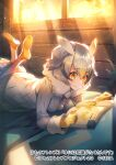 1girl bird_girl bird_tail bird_wings blonde_hair book bug butterfly coat commentary_request eyebrows_visible_through_hair fur_collar gloves grey_hair hair_between_eyes hasumikaoru head_wings insect kemono_friends kemono_friends_3 light_rays long_sleeves multicolored_hair northern_white-faced_owl_(kemono_friends) official_art on_bed owl_ears owl_girl pantyhose reading short_hair solo sunbeam sunlight white_coat white_fur white_hair white_legwear wings winter_clothes yellow_eyes yellow_footwear yellow_gloves