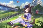 3girls animal_ears blue_flower blue_headwear blue_rose blue_sky blush bow bride brown_footwear bug building clouds cloudy_sky collarbone commentary_request dandelion drawing dress dutch_angle flower gold_ship_(umamusume) grass hair_over_one_eye hat hat_flower high_heels highres holding holding_pencil horse_ears horse_girl horse_tail insect jogging ladybug legs legs_together light_blue_hair light_purple_hair looking_up mejiro_mcqueen_(umamusume) multiple_girls open_mouth outdoors pencil puffy_short_sleeves puffy_sleeves purple_bow purple_dress purple_legwear rice_shower_(umamusume) rose scenery school_uniform segway shiny shiny_hair sho_(shoichi-kokubun) short_dress short_sleeves sitting sky solo_focus stairs tail thigh-highs thighs tilted_headwear tracen_school_uniform track_suit umamusume violet_eyes