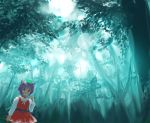 cat_ears chen forest nature scenery takashima touhou
