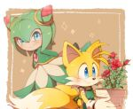1boy 1girl animal_nose blue_eyes blush closed_mouth cosmo_(sonic_x) flower fox_boy furry misuta710 monster_girl multiple_tails plant plant_girl red_flower red_rose rose smile snout sonic_(series) sonic_x tail tails_(sonic) two_tails vase