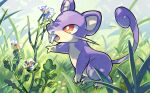 bright_pupils commentary_request fangs fangs_out flower gen_1_pokemon grass kamijima871 no_humans open_mouth orange_eyes pokemon pokemon_(creature) rattata solo standing tongue white_pupils