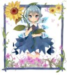 1girl :o ahoge antidote bangs blue_bow blue_dress blue_eyes blue_hair blush bow cirno commentary_request cowboy_shot dress eyebrows_visible_through_hair flat_chest flower flower_request hair_bow highres holding holding_flower ice ice_wings leaf parted_lips puffy_short_sleeves puffy_sleeves purple_flower red_neckwear red_ribbon ribbon short_hair short_sleeves simple_background solo standing sunflower touhou wings yellow_flower