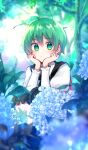 1girl ahoge androgynous antennae bangs black_cape black_shorts blue_flower blush cape closed_mouth collared_shirt commentary_request day eyebrows_visible_through_hair feet_out_of_frame flower green_eyes green_hair hair_between_eyes hands_on_own_cheeks hands_on_own_face highres hydrangea katsuobushi_(eba_games) long_sleeves looking_at_viewer outdoors red_cape shiny shiny_hair shirt short_hair shorts solo sparkle squatting touhou tree two-sided_cape two-sided_fabric white_shirt wriggle_nightbug
