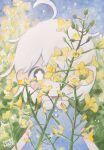 1girl ahoge blue_dress dated dress flower highres leaf medium_hair one_eye_covered original plant short_sleeves signature solo white_hair yellow_eyes yellow_flower zukky000