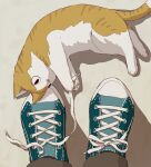 animal_focus aqua_footwear avogado6 brown_cat brown_pants cat commentary_request from_above looking_to_the_side lying on_floor on_side original out_of_frame pants pov shadow shoelaces shoes sneakers solo_focus untying white_cat