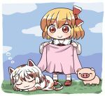 2girls :3 ^_^ animal_ears blonde_hair blue_sky border bow calico cat_ears closed_eyes closed_mouth clouds eyebrows_visible_through_hair goutokuji_mike grass hair_bow holding_blanket long_sleeves looking_at_another maneki-neko multicolored multicolored_clothes multicolored_hair multicolored_shirt multicolored_skirt multicolored_tail multiple_girls outdoors pig red_bow red_eyes red_footwear red_neckwear rokugou_daisuke rumia short_hair short_sleeves skirt sky sleeping smile standing streaked_hair tail touhou touhou_cannonball white_border white_hair white_legwear