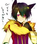 1boy animal_around_neck animal_ear_fluff animal_ears arutopian bangs black_gloves black_hair closed_mouth commentary_request detached_sleeves eyebrows_visible_through_hair eyes_visible_through_hair fingerless_gloves fox gloves hair_between_eyes looking_at_viewer male_focus professor_(ragnarok_online) ragnarok_online red_eyes red_shirt shirt short_hair simple_background sleeveless sleeveless_shirt solo striped_sleeves translation_request upper_body white_background white_sleeves yellow_sleeves