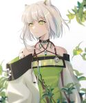 1girl animal_ears arknights bangs bare_shoulders black_choker chinese_commentary choker commentary_request criss-cross_halter dress green_dress green_eyes halterneck highres jiaonijiaosida kal'tsit_(arknights) long_sleeves looking_to_the_side lynx_ears o-ring off-shoulder_dress off_shoulder oripathy_lesion_(arknights) plant short_hair silver_hair simple_background solo stethoscope upper_body white_background