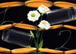 acrylic_paint_(medium) black_background cup drinking_glass eustoma floating floating_object flower food fruit highres leaf metal_wire no_humans noske orange_(food) orange_slice original simple_background still_life traditional_media white_flower wire