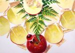 acrylic_paint_(medium) apple apple_slice cracker fern food fruit highres leaf light marble no_humans noske original shadow simple_background still_life traditional_media white_background