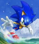 1boy animal_nose blue_sky english_commentary furry gloves green_eyes highres male_focus rainbow red_footwear running rythayze shoes sky smile sneakers solo sonic_(series) sonic_the_hedgehog water white_gloves