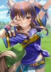 1girl \m/ animal_ears arm_up banned_artist belt belt_buckle blue_hair blue_shirt blue_shorts blurry blurry_background blush breasts brown_eyes brown_hair buckle commentary_request daitaku_helios_(umamusume) day depth_of_field grin highres horse_ears horse_girl horse_tail looking_at_viewer medium_hair multicolored_hair navel one_eye_closed outdoors racetrack shirt short_shorts short_sleeves shorts small_breasts smile solo streaked_hair tail tied_shirt umamusume wide_sleeves yellow_belt yuuka_nonoko