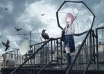 1girl absurdres air_conditioner antenna_hair bag bird braid building clouds cloudy_sky collared_shirt crow expressionless full_body highres kaf_(kamitsubaki_studio) kamitsubaki_studio kneehighs loafers low_twin_braids multicolored multicolored_eyes neck_ribbon overcast pink_hair railing red_ribbon ribbon rooftop satellite_dish school_bag school_uniform shirt shoes shoulder_bag skirt sky transparent transparent_umbrella twin_braids umbrella virtual_youtuber white_shirt winter_parasol yellow_pupils
