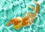 afloat black_eyes buizel commentary from_above full_body gen_4_pokemon looking_to_the_side no_humans outdoors pn_(ltpn_257) pokemon pokemon_(creature) swimming water