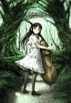 1girl black_hair dress forest instrument loli long_hair looking_back nature original skirt source_request thigh-highs violin white_dress yoneda_taishou
