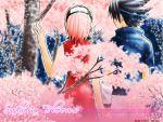 haruno_sakura naruto tagme uchiha_sasuke