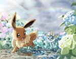 :d blush brown_eyes commentary_request day eevee gen_1_pokemon highres leaf light_rays nako_(nekono_shippo75) no_humans open_mouth outdoors paws plant pokemon pokemon_(creature) puddle rainbow running smile toes tongue vaporeon water