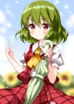 1girl ascot bangs blue_sky blurry blurry_background blush buttons commentary_request dress eyebrows_visible_through_hair flower green_hair green_umbrella hand_up highres holding holding_umbrella kazami_yuuka looking_at_viewer outdoors petals plaid plaid_dress pout red_dress red_eyes ruu_(tksymkw) shirt short_hair short_sleeves sky solo sunflower touhou umbrella undershirt upper_body wavy_hair white_shirt yellow_neckwear