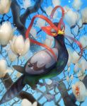 bird closed_mouth commentary_request day flower gen_5_pokemon highres kikuyoshi_(tracco) looking_at_viewer looking_to_the_side no_humans outdoors pokemon pokemon_(creature) solo standing talons tree_branch unfezant white_flower yellow_eyes