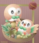 ball bird black_eyes bowl bright_pupils character_name closed_mouth commentary_request gen_7_pokemon leaf looking_at_another no_humans open_mouth owl pokemon pokemon_(creature) rowlet sasabunecafe standing tongue twitter_username white_pupils